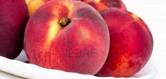 """فوائد فاكهة الخوخ ظپظˆط§ط¦ط¯_ظپط§ظƒظ‡ط©_ط§ظ""""ط®ظˆط®.jpg"""