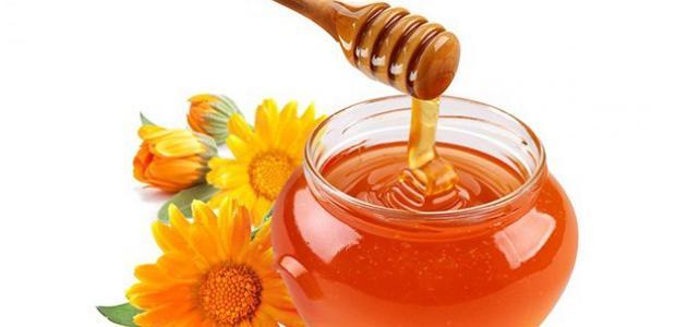 فوائد عسل السدر للحامل