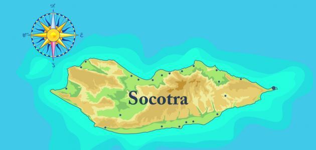 كم مساحة جزيرة سقطرى