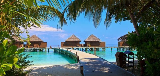 لغة جزر المالديف