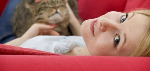 هل القطط تسبب الأمراض