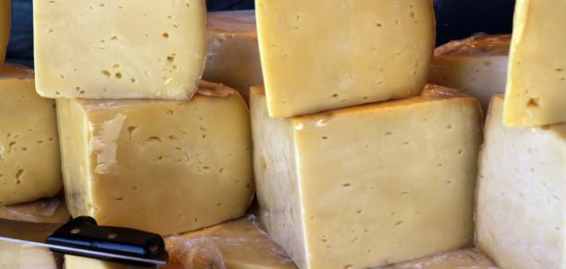 كيف تصنع الجبن من الحليب
