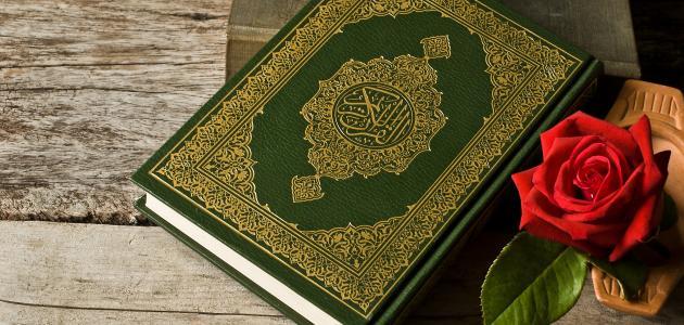 ما عدد سور القرآن موضوع