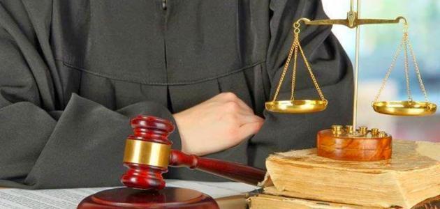 معايير القانون الإداري