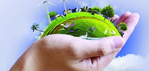 مقالة علمية عن البيئة
