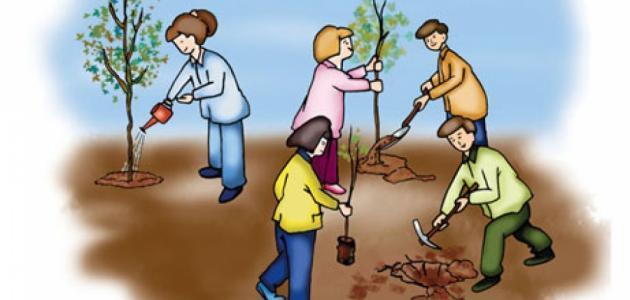 تقرير عن حماية البيئة