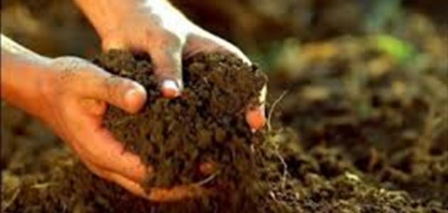 بحث حول مكونات التربة