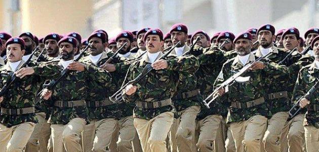 كم عدد أفراد الجيش الباكستاني