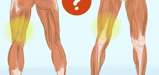 علاج شد عضلة الفخذ الأمامية