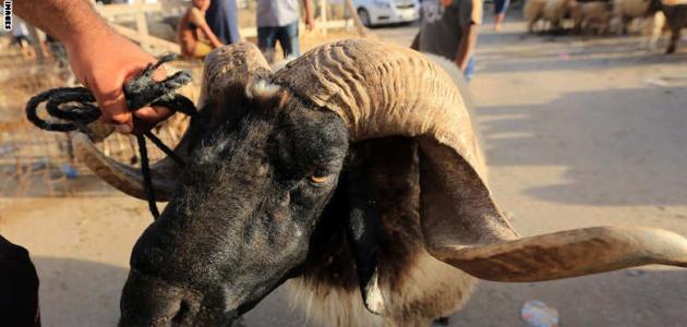 عيد الأضحى في ليبيا