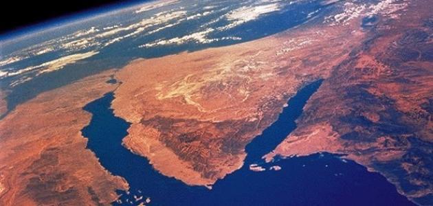 بحث عن شبه جزيرة سيناء