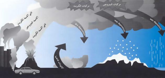 تقرير عن ظاهرة التلوث