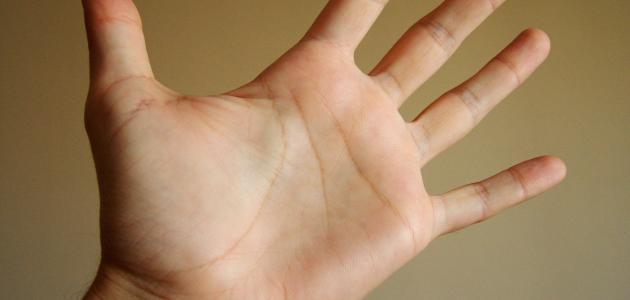 ما سبب ظهور عروق اليد