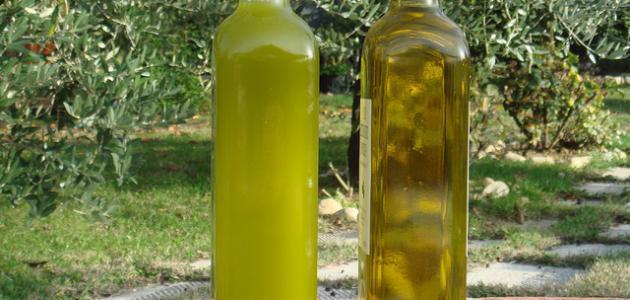 كيفية صناعة زيت الزيتون