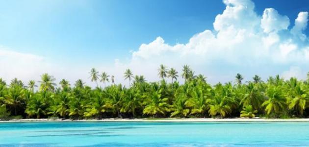 جزيرة تونغا