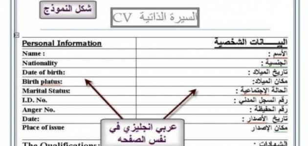 كيفية عمل سيرة ذاتية بالعربية موضوع