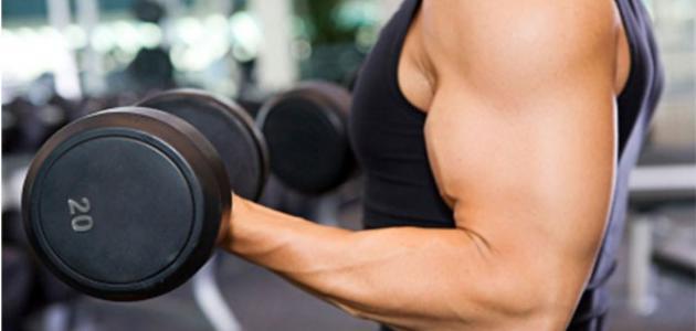 كيفية زيادة الوزن بالرياضة