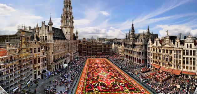 ما هي لغة دولة بلجيكا