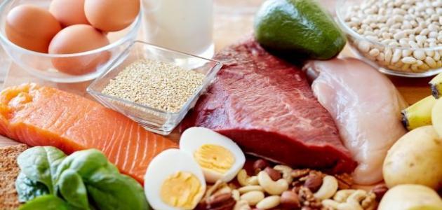 البروتينات لزيادة الوزن