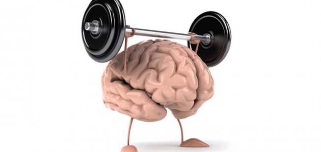 ما هو الفيتامين الذي يقوي الذاكرة
