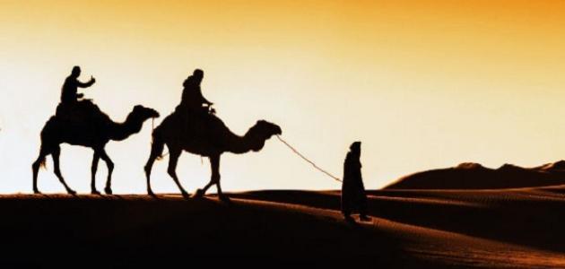 ما هي أسباب هجرة الرسول