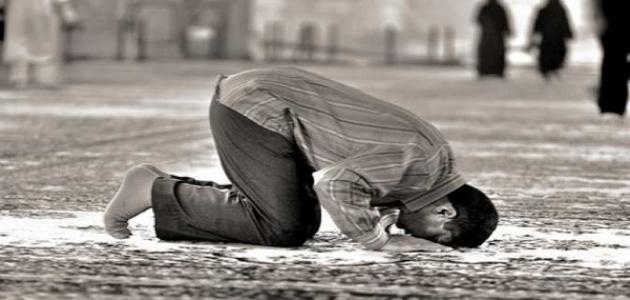 ما هو حكم تارك الصلاة