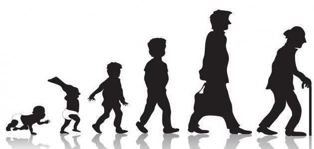 علم نفس المراحل العمرية
