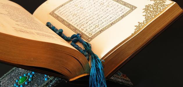 عدد السور المدنية في القرآن الكريم
