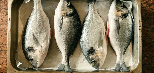 سمك مشوي في الفرن