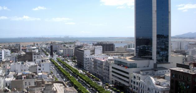 عدد السكان في تونس