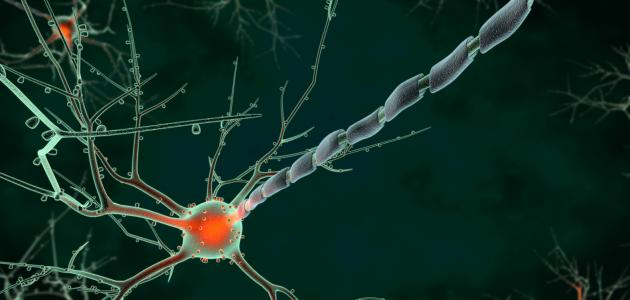 ما هو التهاب العصب السابع