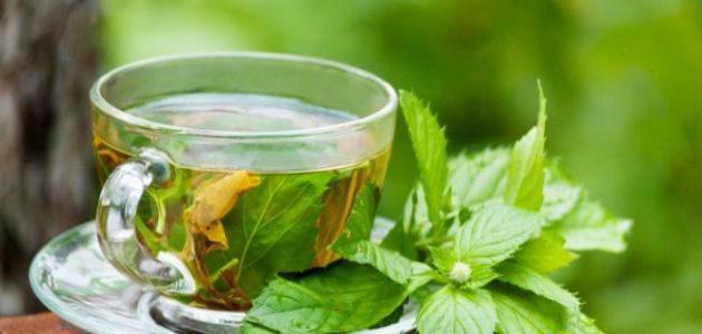 طريقة شاي النعناع