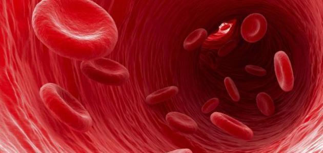 ما هو سرطان الدم
