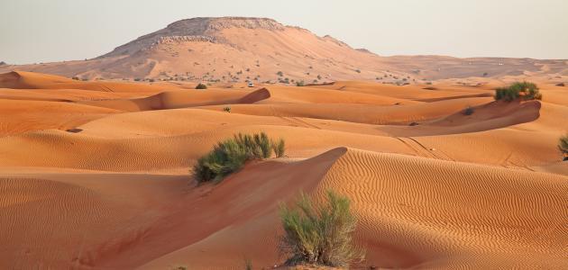 تضاريس دول مجلس التعاون الخليجي