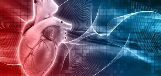 ما هو ضعف عضلة القلب