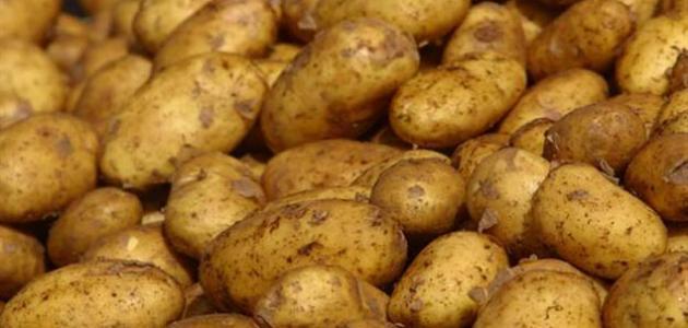طرق حفظ البطاطس