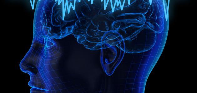 ما هو رسم المخ
