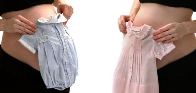 كيفية معرفة جنس الجنين