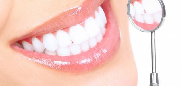معلومات عامة عن الأسنان