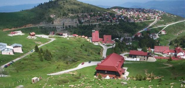 معلومات عن دولة ألبانيا