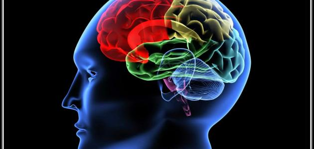 هل يوجد علاج لضمور المخ