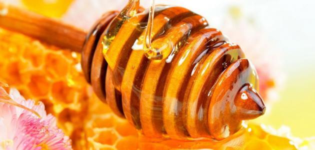 معلومات عن العسل وفوائده