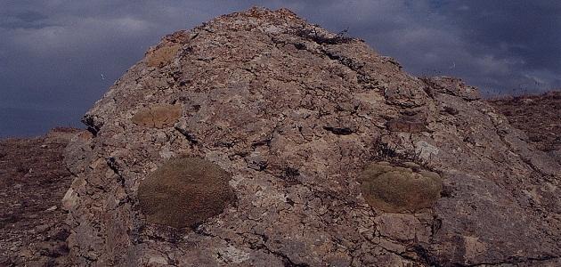 ما هو جبل الجودي