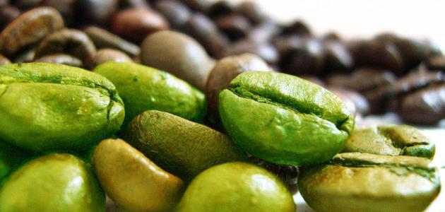فوائد حبوب القهوة الخضراء