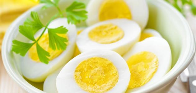فوائد البيض البلدي للشعر