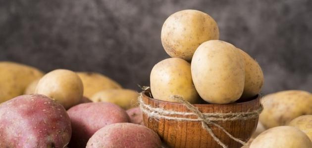 فوائد البطاطا لمرضى السكر