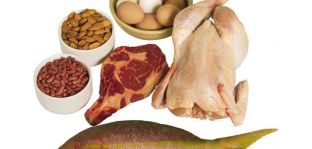 ما هو رجيم البروتين