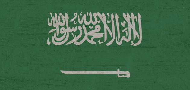 كم مدينة في المملكة السعودية