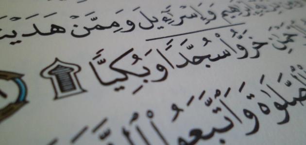 عدد سجدات القرآن