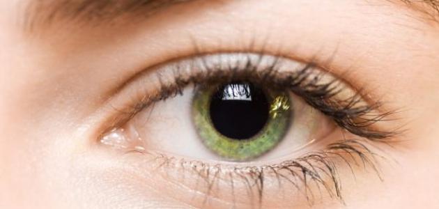 فيتامينات مفيدة للعين